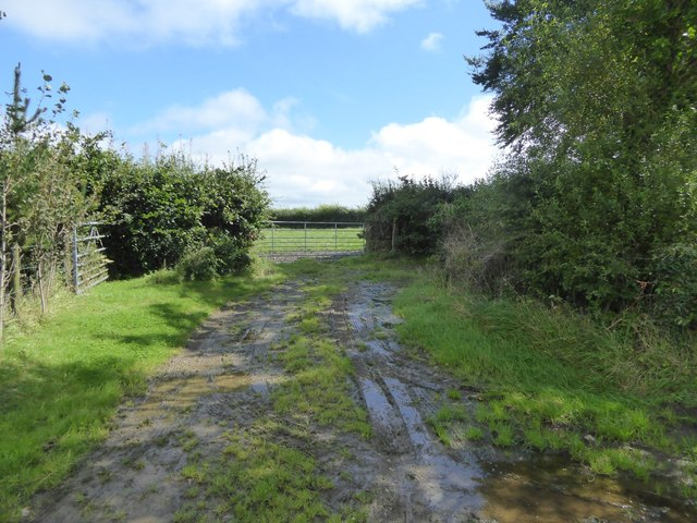 Short track to a field at Cruft Gate