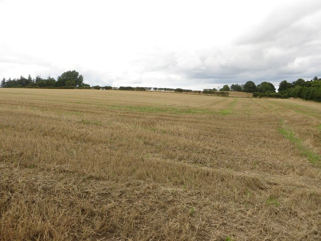 Arable land near Coney Hill