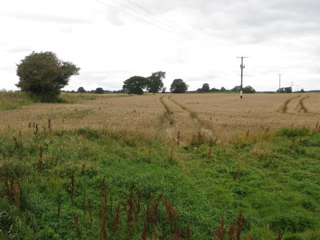 Arable field south of Newton Mill