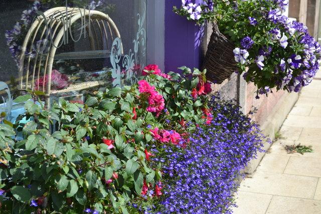 Flowery shopfront, Wooler High Street