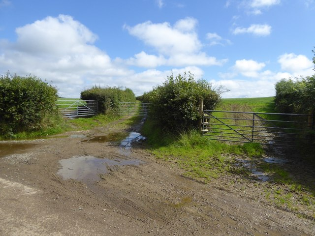 Field access track on South Moor