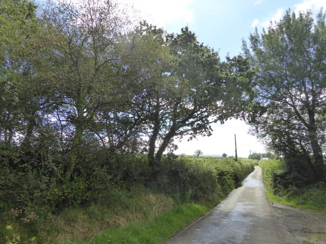 Looking south from the trees of South Moor to Cruft