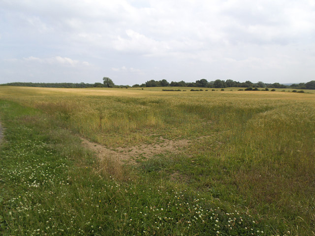 Field off How Hill Road