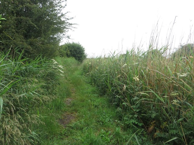 Footpath beside the Leven Canal