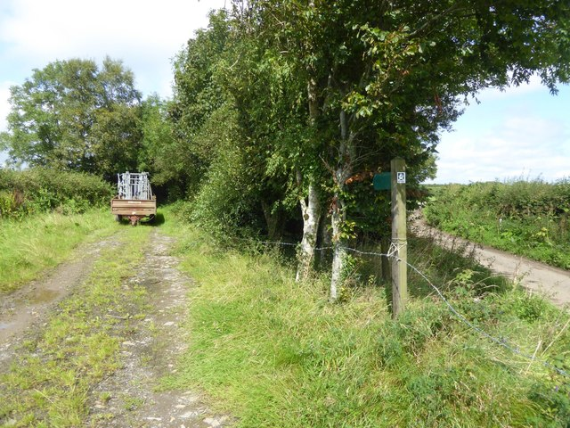 Start of a path to Heath Moor