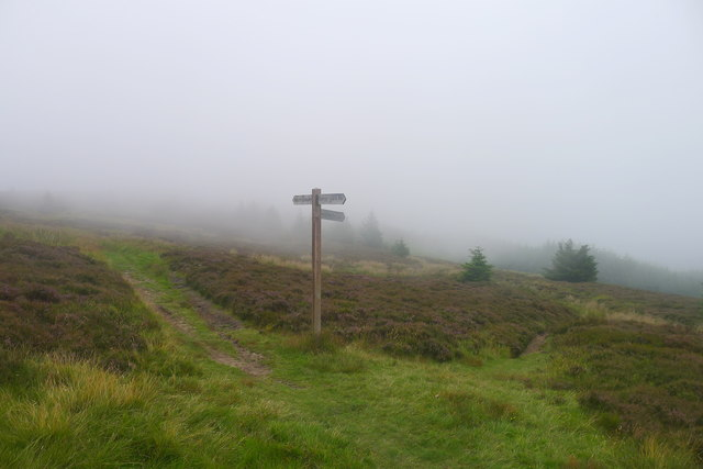 The Cross Borders Drove Road meets the Southern Upland Way