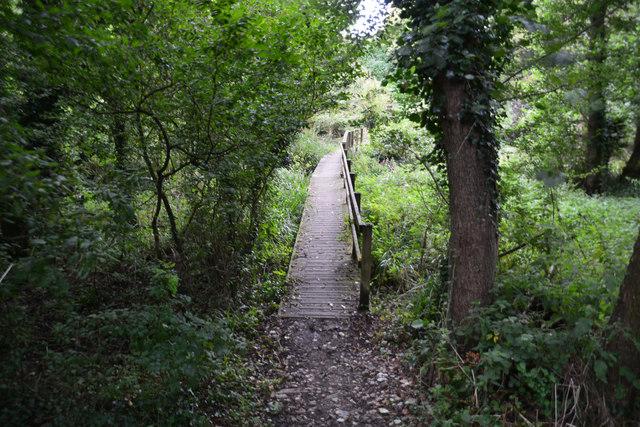 Toller Porcorum : Footpath
