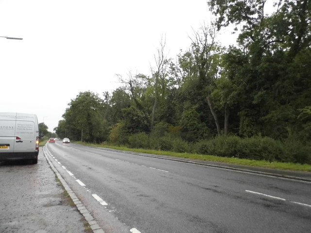 High Road, Thornwood Common