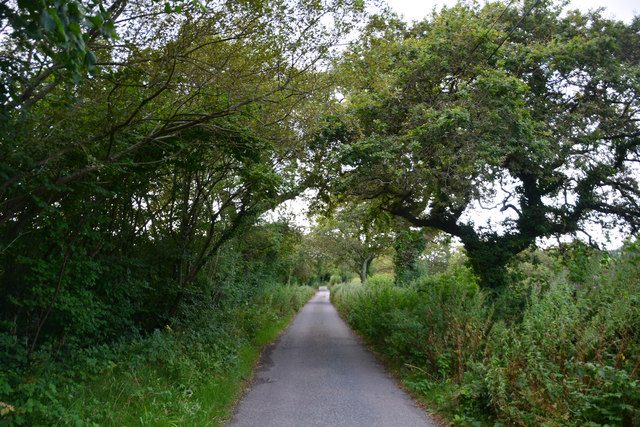 West Dorset : Kingcombe Road