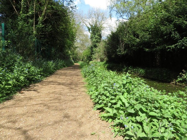 Path by Hobson's Brook