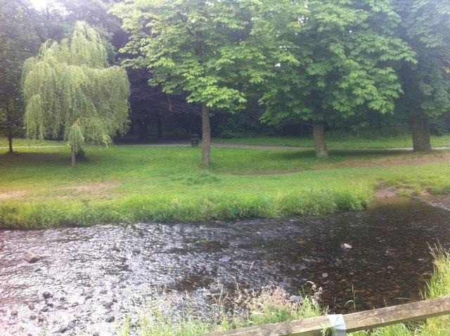 Shelf Brook at Manor Park