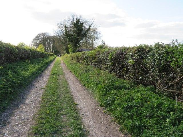 Nutley Lane approaching Clump Farm