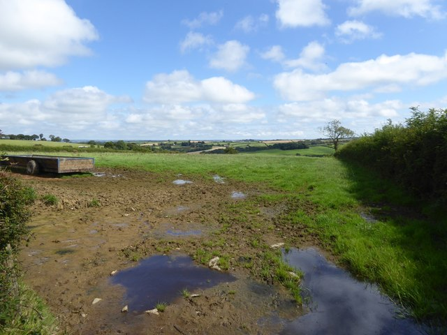 Muddy gateway into field near Higher Gorhuish