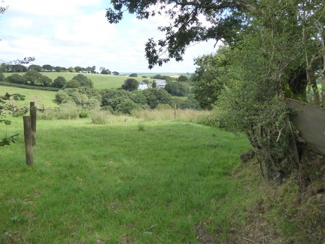 Wooded valley south of Horning Down