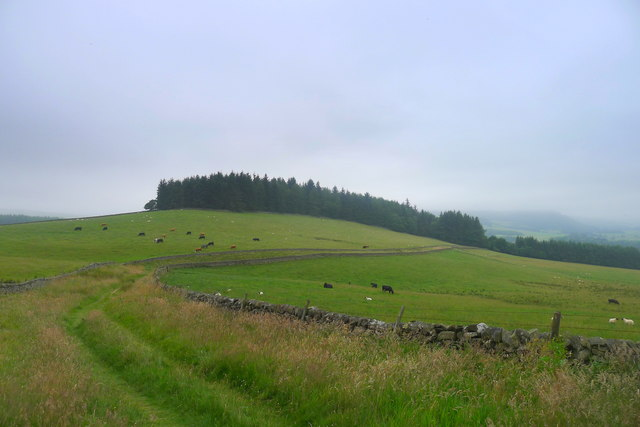 The Southern Upland Way curving round Shaw Hill