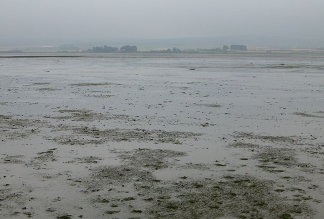 Looking across Holy Island Sands
