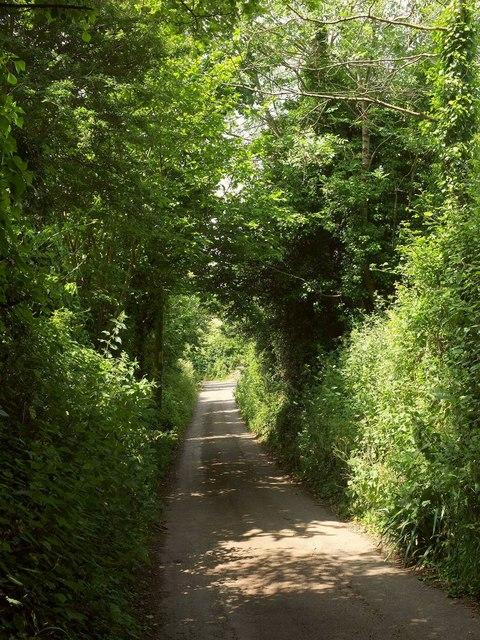 Luscombe Lane