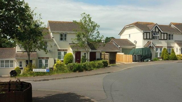 Houses on Cotehele Drive, Paignton