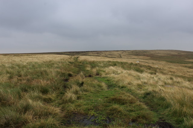 Bridleway on Flaight Hill