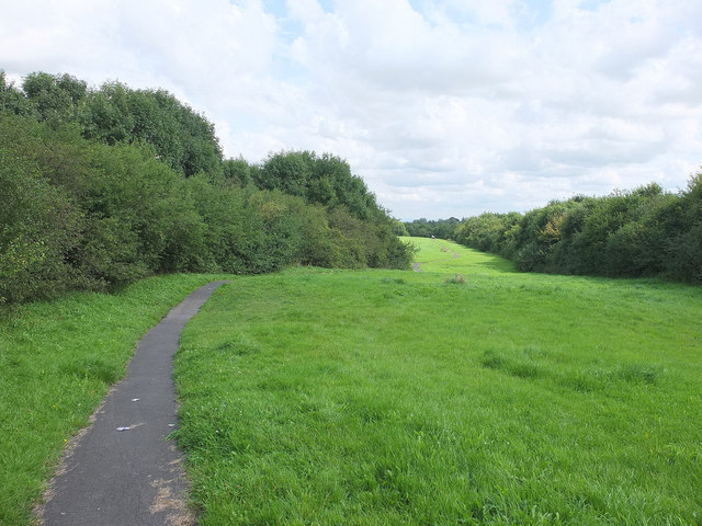 Thatto Heath Meadows