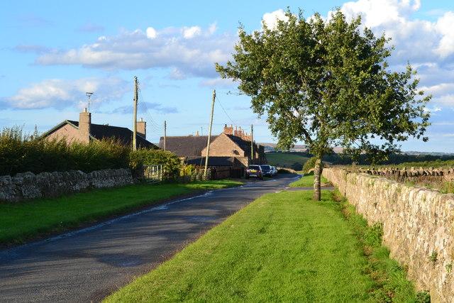 Lane at New Ladykirk
