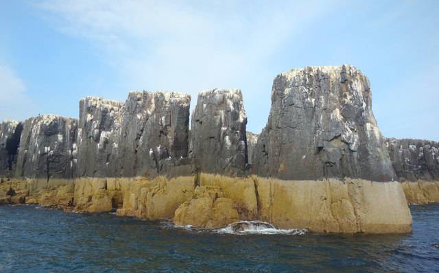 Rock Pinnacles, Staple Island