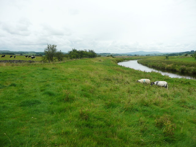 Pasture between the Ribble Way and the River Ribble