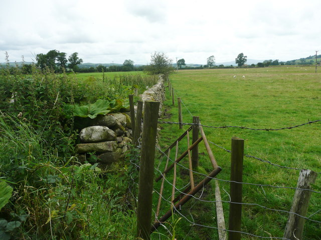Field boundary off F;at Lane, Long Preston
