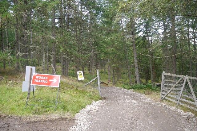 Forest road, Fonab