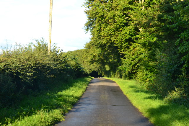 Lane near Winfield Farm