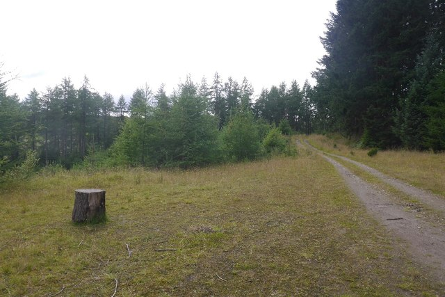 Logging road, Fonab