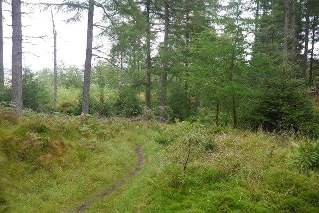 Path, Fonab