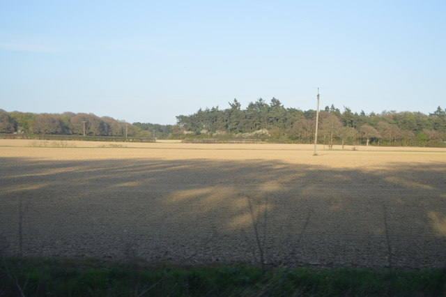 Farmland by Ashford Rd