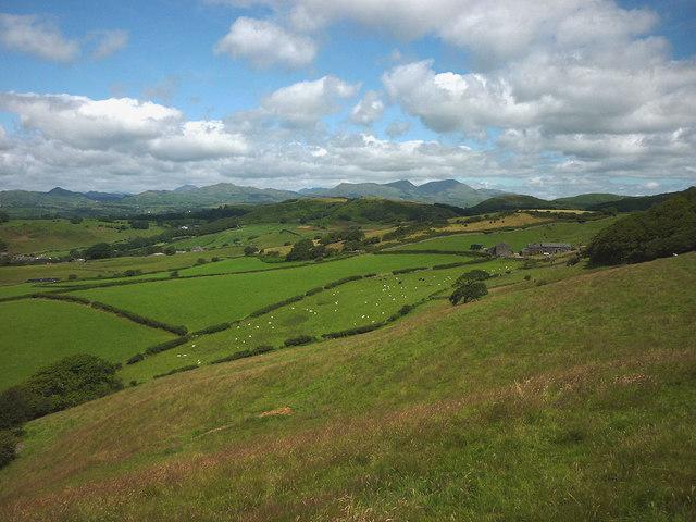 Hillside south of Hallstead