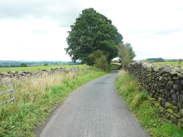 Tod Holes Lane at Small Gill,Wigglesworth