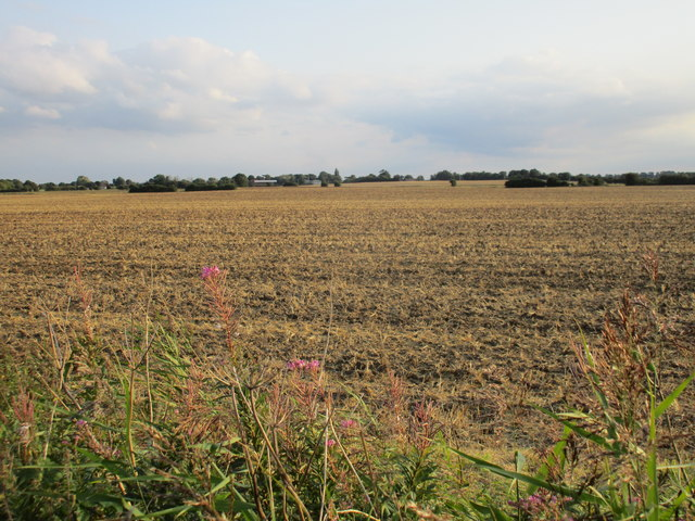 View towards Thorngumbald