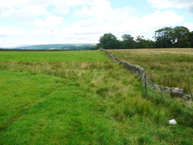 Footpath from Green Hippins to Hard Head Farm, Wigglesworth