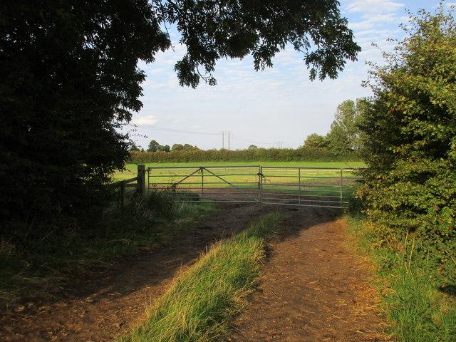 Gates across a farm track