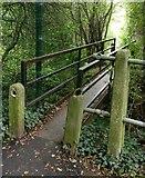 SK5501 : Footbridge across the Lubbesthorpe Brook by Mat Fascione