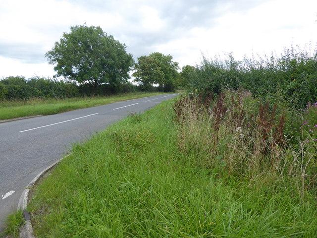 Haddington Lane
