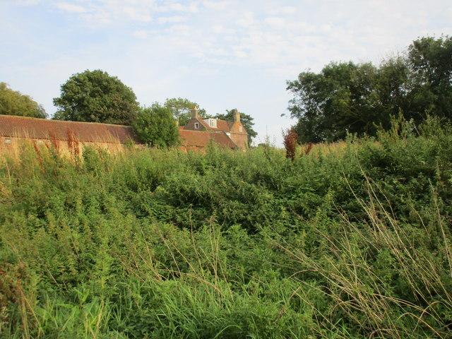 Burstwick House above the nettles