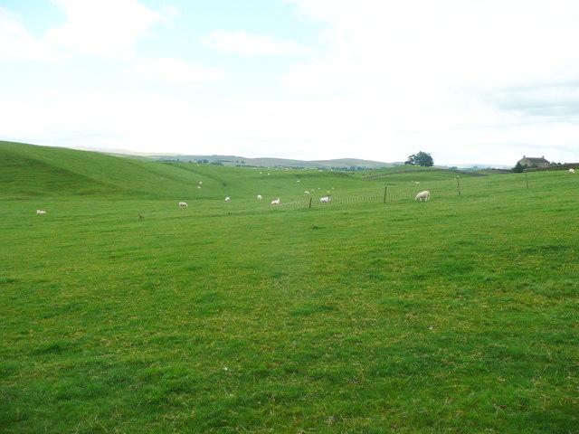 View from Jack Lane, Wigglesworth