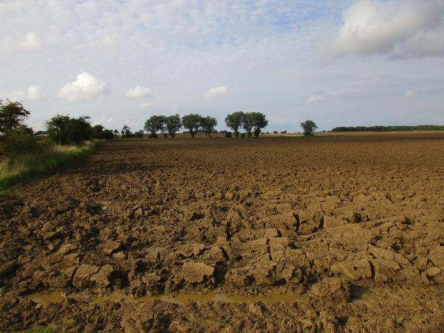 Deep ploughed field