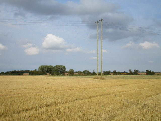 Electricity pole and stubble field