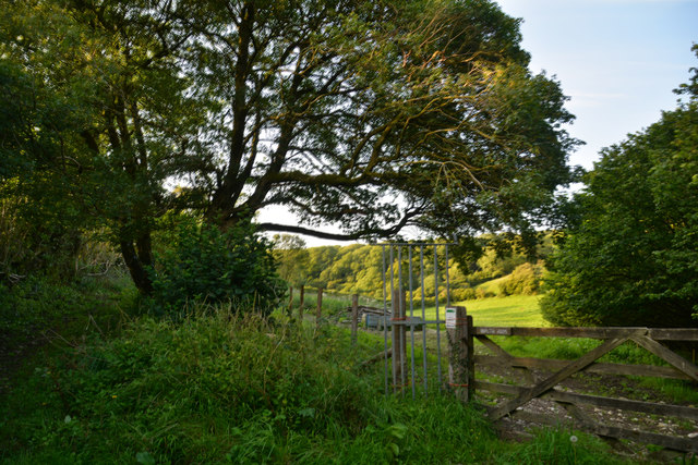 West Dorset : Countryside Scenery