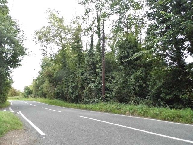 Tilegate Road, Tilegate Green