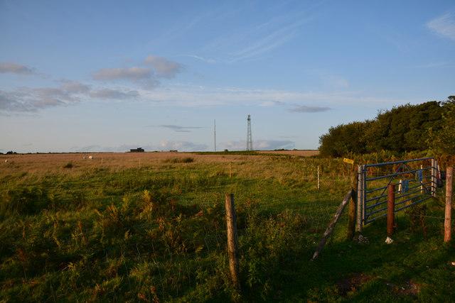 West Dorset : Rampisham Down
