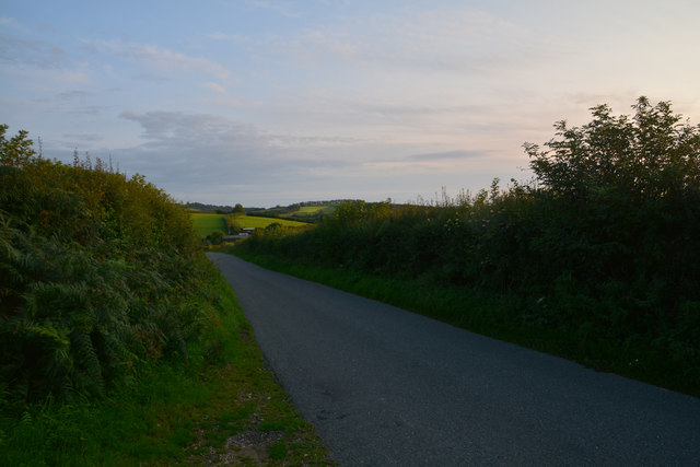 West Dorset : Country Lane