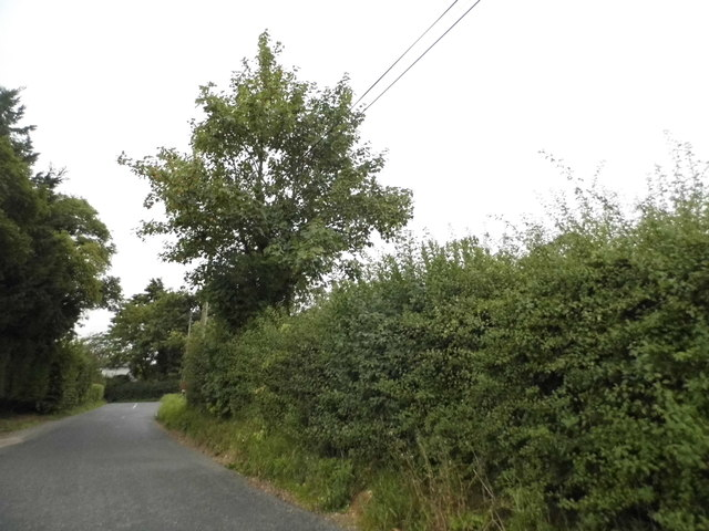 Mill Lane, Moreton