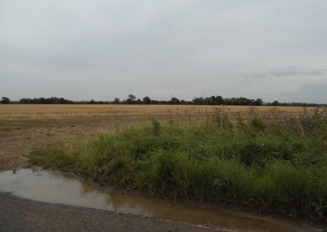 Field by Fyfield Road, Moreton